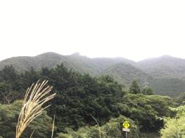 On the hike to Ashi-no-ko